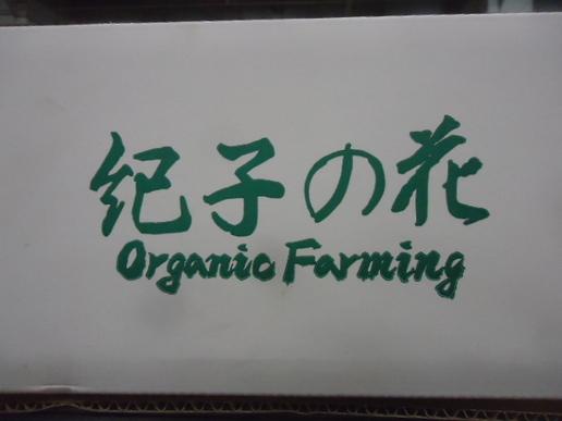紀子ロゴ.JPG