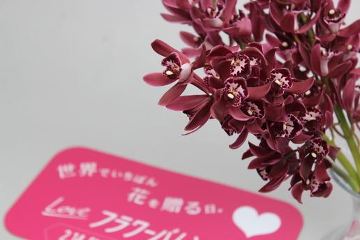かふぇのあ②.JPG