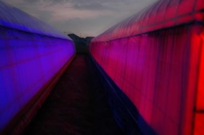 LED温室.JPGのサムネイル画像のサムネイル画像
