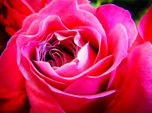 s-RIMG1384.jpgのサムネイル画像のサムネイル画像のサムネイル画像