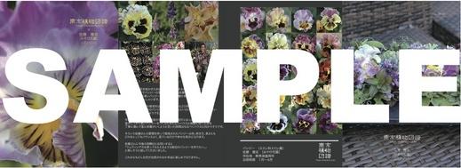 zufu_sample2.jpg