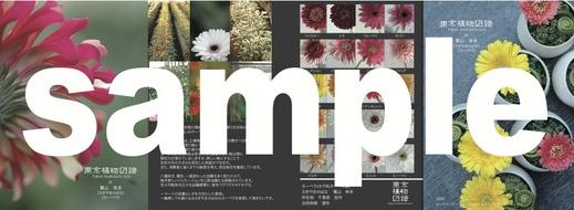 zufu_2013_4.2.jpg