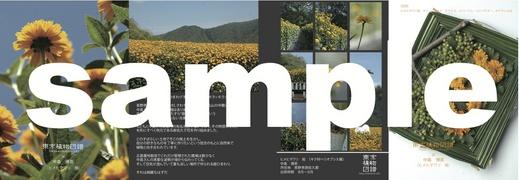 zufu_8_1.jpg