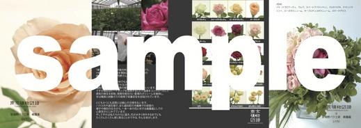 zufu_9_1.jpg