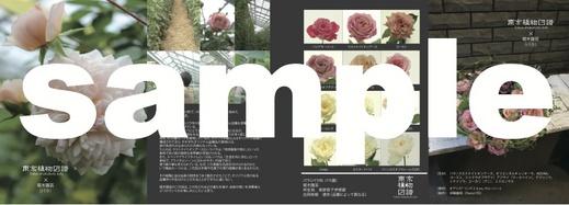 zufu_11_1.jpg