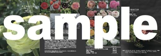 zufu_3_b.jpg