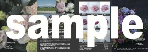 zufu_3rd_8_2.jpg