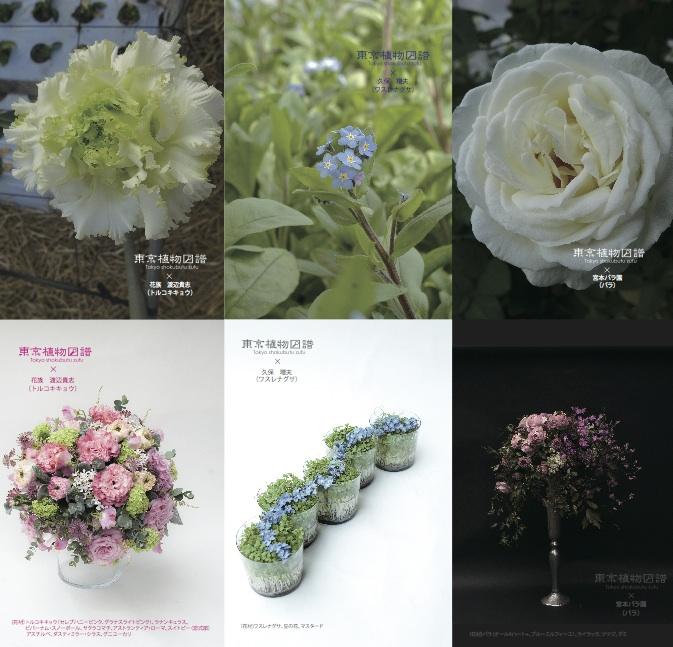 http://flore21.com/contents/zufu/zufu_4th_3.jpg