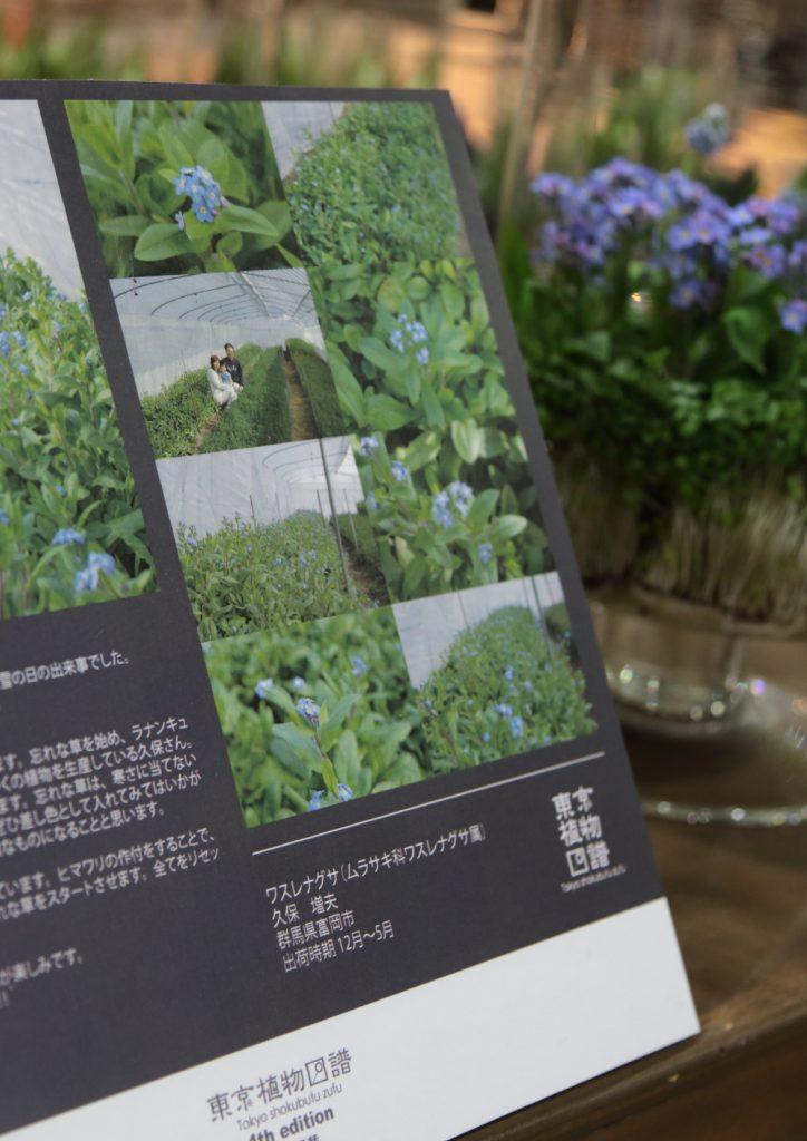 東京植物図譜